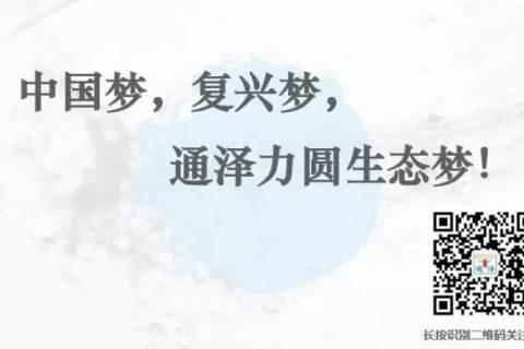 五福临门!通泽单日销售又破新纪录!